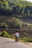 Två bypojkar som går på sidan av en smutsig bana bredvid risterrasserna på Yuanyang royaltyfri bild