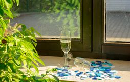Två champagneexponeringsglas i solljuset arkivbild
