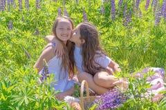 Två charma unga flickor med långt hår på fältet med lupin Den tonåriga flickan kysser hennes vän Flickvänner begreppet arkivbild