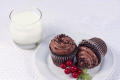 Två chokladmuffin Royaltyfri Fotografi
