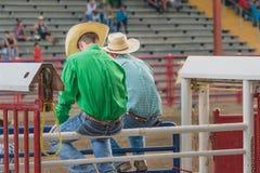 Två cowboyer sitter på banorna på Williams Lake Stampede royaltyfri foto