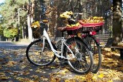 Två cyklar i höst parkerar med gula trädsidor Arkivbilder