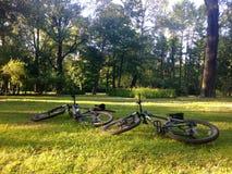Två cyklar ligger på det gröna gräset på ängen i pet royaltyfri fotografi
