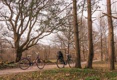 Två cyklar som parkeras i en liten landsväg i skogen, Jomfruland nationalpark, Kragero, Norge Arkivbilder