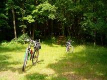 Två cyklar som står bredvid en skog Arkivfoto