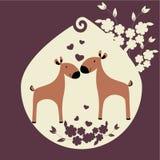 Två deers Fotografering för Bildbyråer