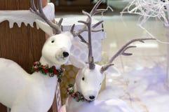 Två deersdockor i snödag Arkivbild