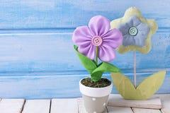 Två dekorativa blommor i kruka på blå träbakgrund Fotografering för Bildbyråer
