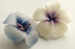 Två dekorativa stearinljus i formen av blommor Arkivfoton