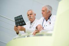 Två doktorer som ser röntgenstrålen arkivfoton