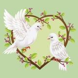 Två duvor på ett hjärtaformträd Royaltyfria Bilder