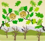 Två ekollonar och kala träd Royaltyfri Bild