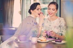 Två eleganta unga damer i ett kafé Royaltyfri Bild