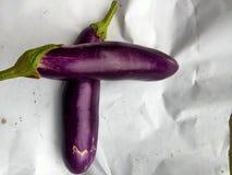 två exotiska aubergine arkivfoto