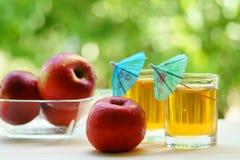 Två exponeringsglas av äppelmust med det röda äpplet och en bunke med röda äpplen i den Fotografering för Bildbyråer