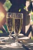 Två exponeringsglas av att moussera vitt vin Fotografering för Bildbyråer