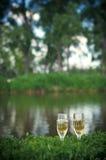 Två exponeringsglas av champagne i gräset i natur Arkivfoton