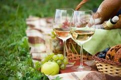 Två exponeringsglas av den vita winen Royaltyfria Bilder