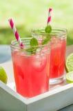 Två exponeringsglas av iskall lemonad royaltyfri fotografi