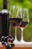 Två exponeringsglas av rött vin på en bordlägga Arkivfoto