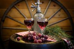 Två exponeringsglas av rött vin som smyckas med druvor arkivbild