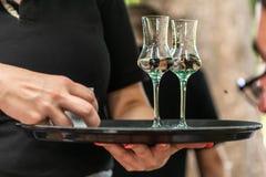 Två exponeringsglas av starksprit eller grappa på en platta tjänade som i en tysk biergarten av en vingård arkivbild