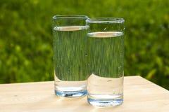 Två exponeringsglas av vatten på gräsbakgrund royaltyfri bild