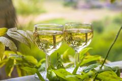 Två exponeringsglas av vitt vin i det fria av en av Beaujolaisregionbyarna, Frankrike royaltyfria foton