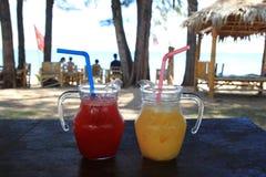 Två exponeringsglas med mangofruktsaft och vattenmelonfruktsaft på en tabell med havet på en bakgrund arkivbild
