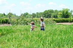 Två fågelskrämmor eller strawmans i grönt risfältfält royaltyfria bilder