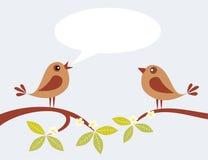 Två fåglar Arkivbilder