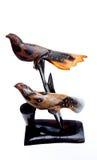 Två fåglar ett par Royaltyfria Bilder