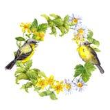 Två fåglar, lösa örter, ängblommor Blom- krans vattenfärgcirkel Royaltyfria Foton