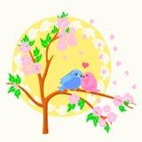 Två fåglar som sitter på filialen Arkivfoton