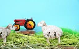 Två får-, traktor- och blåttbakgrund fotografering för bildbyråer