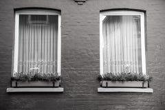 Två fönster med blommor i krukor på väggen för röd tegelsten Arkivfoto