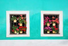 Två fönster som dekoreras med nya färgrika blommor Arkivbilder