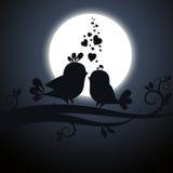 Två förälskade fåglar Arkivfoto