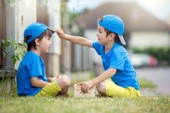 Två förtjusande lilla barn, pojkebröder som äter jordgubbar, Arkivfoto