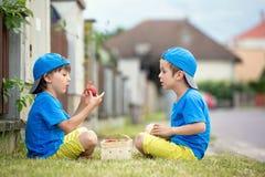 Två förtjusande lilla barn, pojkebröder som äter jordgubbar, Arkivbild