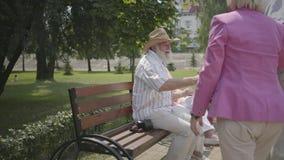 Två förtjusande mogna par möter i parkerar Dubbelträff av höga par Gamala män och kvinnor som hälsar sig, man arkivfilmer