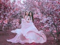 Två fantastiska älvor går i den sagolika trädgården för den körsbärsröda blomningen Prinsessor i lyxigt, långt, rosa färgklänning arkivfoto