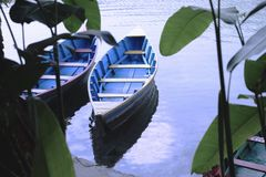 Två fartyg i grön djungel royaltyfria bilder