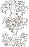 Två flätade ihop träd rotar tecknade kvinnor för framsidahandillustration s Arkivbilder
