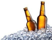 Två flaskor av öl på is arkivfoton