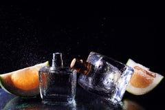 Två flaskor av dofter med citruns Royaltyfri Foto