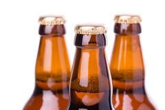 Två flaskor av iskallt öl som isoleras på vit Royaltyfri Foto