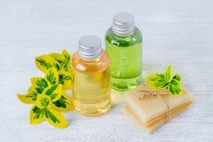 Två flaskor av naturligt hårschampo och den handgjorda organiska hårtvålstången med växter Arkivbild