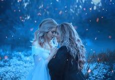 Två flickor av beståndsdelarna, motsatser, älskar sig som är kelig med affektion Bakgrundsdimma och mystisk skog royaltyfri foto