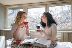 Två flickor dricker kaffe och skrattar i kafé royaltyfri foto